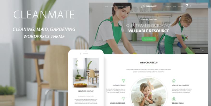 Cleanmate WordPress theme